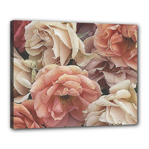 Great Garden Roses, Vintage Look  Canvas 20  X 16