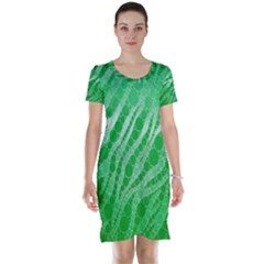 Florescent Green Zebra Abstract  Short Sleeve Nightdresses by OCDesignss