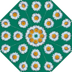 Daisy Pattern  Hook Handle Umbrellas (small) by theimagezone