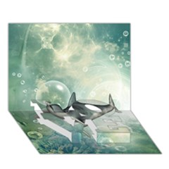 Funny Dswimming Dolphin Love Bottom 3d Greeting Card (7x5)