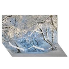 Another Winter Wonderland 1 Twin Heart Bottom 3d Greeting Card (8x4)