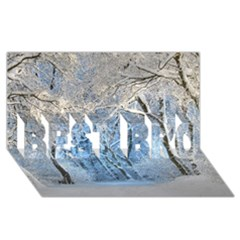 Another Winter Wonderland 1 Best Bro 3d Greeting Card (8x4)  by MoreColorsinLife