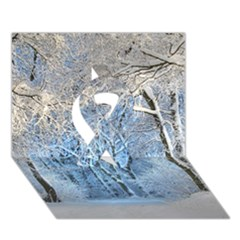 Another Winter Wonderland 1 Ribbon 3d Greeting Card (7x5)