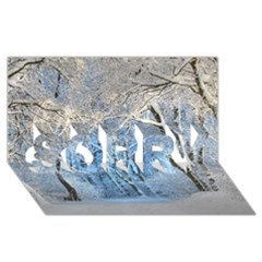 Another Winter Wonderland 1 Sorry 3d Greeting Card (8x4)  by MoreColorsinLife