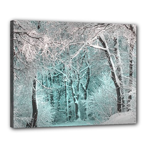 Another Winter Wonderland 2 Canvas 20  x 16  by MoreColorsinLife