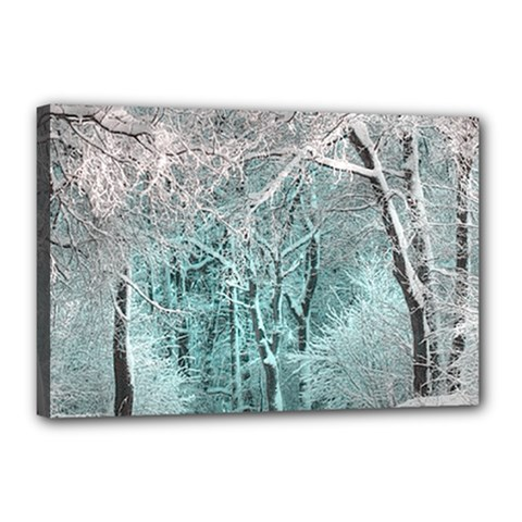 Another Winter Wonderland 2 Canvas 18  x 12  by MoreColorsinLife
