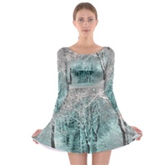 Another Winter Wonderland 2 Long Sleeve Skater Dress