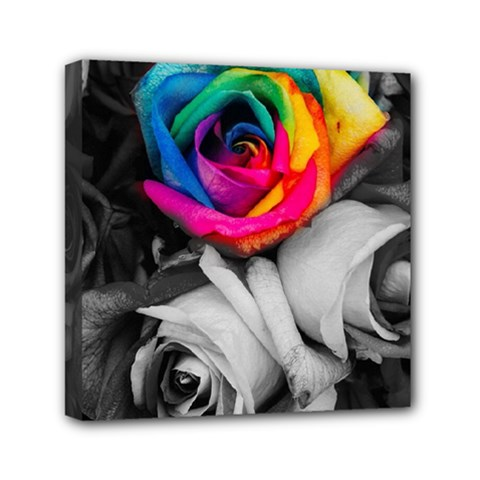 Blach,white Splash Roses Mini Canvas 6  X 6  by MoreColorsinLife