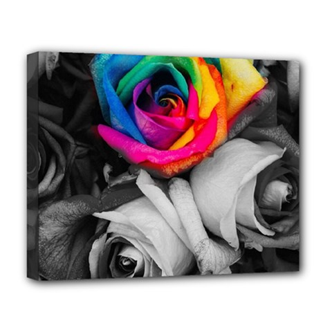 Blach,white Splash Roses Deluxe Canvas 20  X 16