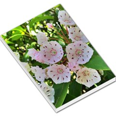 Amazing Garden Flowers 35 Large Memo Pads