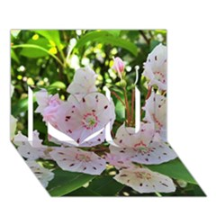 Amazing Garden Flowers 35 I Love You 3d Greeting Card (7x5)