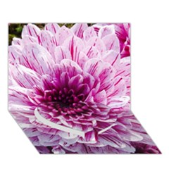 Wonderful Flowers Heart Bottom 3d Greeting Card (7x5)