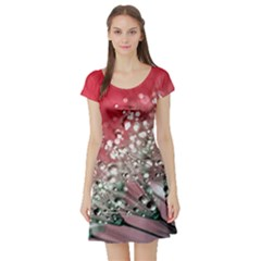 Dandelion 2015 0710 Short Sleeve Skater Dresses