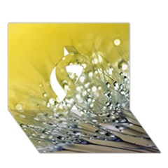 Dandelion 2015 0713 Ribbon 3d Greeting Card (7x5)