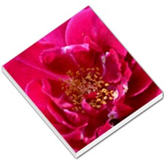 Red Rose Small Memo Pads