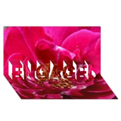 Red Rose Engaged 3d Greeting Card (8x4)  by timelessartoncanvas