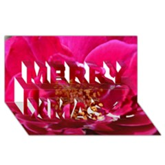 Red Rose Merry Xmas 3d Greeting Card (8x4)  by timelessartoncanvas