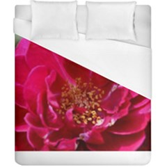 Red Rose Duvet Cover Single Side (Double Size) by timelessartoncanvas