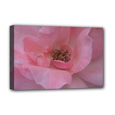 Pink Rose Deluxe Canvas 18  x 12