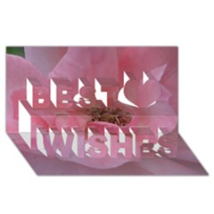 Pink Rose Best Wish 3d Greeting Card (8x4)  by timelessartoncanvas