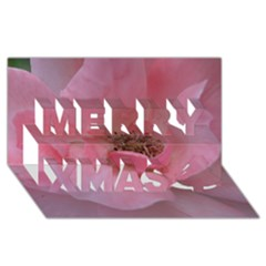 Pink Rose Merry Xmas 3d Greeting Card (8x4)  by timelessartoncanvas