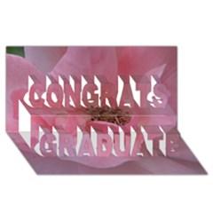 Pink Rose Congrats Graduate 3d Greeting Card (8x4)