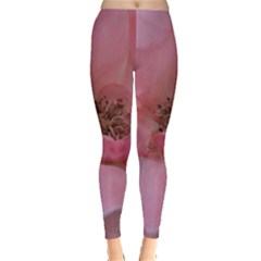 Pink Rose Women s Leggings
