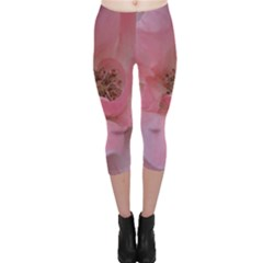 Pink Rose Capri Leggings