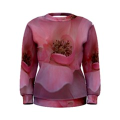 Pink Rose Women s Sweatshirts
