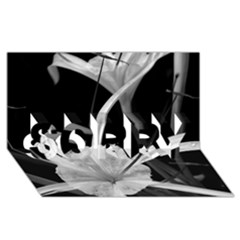 Exotic Black And White Flowers Sorry 3d Greeting Card (8x4)  by timelessartoncanvas