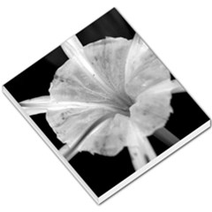Exotic Black And White Flower 2 Small Memo Pads