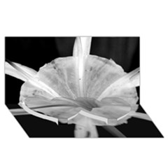 Exotic Black And White Flower 2 Twin Heart Bottom 3d Greeting Card (8x4)