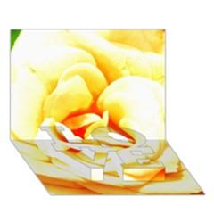 Orange Yellow Rose Love Bottom 3d Greeting Card (7x5)  by timelessartoncanvas