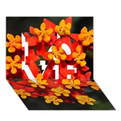 Orange And Red Weed Love 3d Greeting Card (7x5)