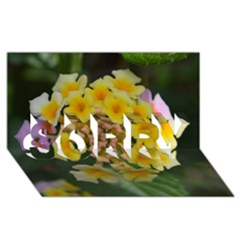 Colorful Flowers Sorry 3d Greeting Card (8x4)  by timelessartoncanvas