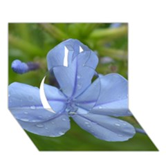 Blue Water Droplets Apple 3d Greeting Card (7x5)