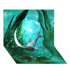 Wonderful Dolphin Circle 3d Greeting Card (7x5)