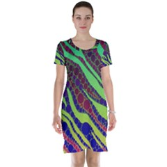 Florescent Zebra Print Pattern  Short Sleeve Nightdresses by OCDesignss