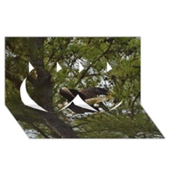 Bald Eagle Twin Hearts 3d Greeting Card (8x4)  by timelessartoncanvas