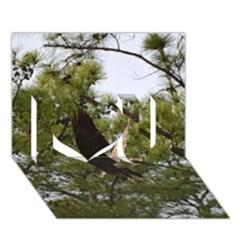 Bald Eagle 2 I Love You 3d Greeting Card (7x5)