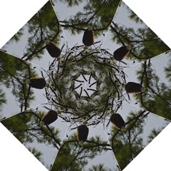 Bald Eagle 4 Golf Umbrellas by timelessartoncanvas