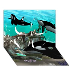 Cute Mermaid Playing With Orca Clover 3d Greeting Card (7x5)  by FantasyWorld7