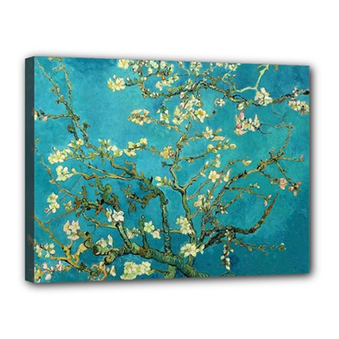 Blossoming Almond Tree Canvas 16  x 12  by MasterpiecesOfArt