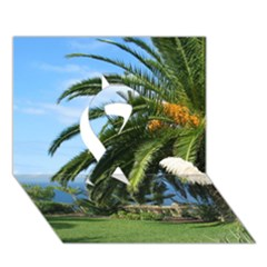 Sunny Tenerife Ribbon 3d Greeting Card (7x5)