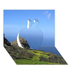Tenerife 09 Apple 3d Greeting Card (7x5)  by MoreColorsinLife