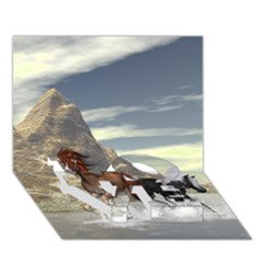 Beautiful Horses Running In A River Love Bottom 3d Greeting Card (7x5)