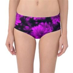 Phenomenal Blossoms Hot  Pink Mid Waist Bikini Bottoms