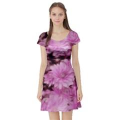 Phenomenal Blossoms Pink Short Sleeve Skater Dresses