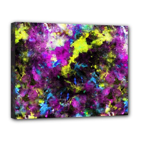 Colour Splash G264 Canvas 14  X 11  by MedusArt