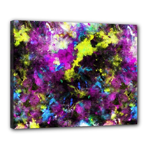 Colour Splash G264 Canvas 20  X 16  by MedusArt